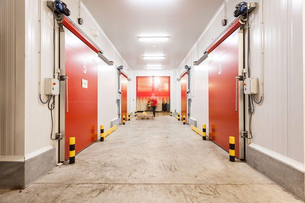 Nuevas instalaciones frigoríficas y climatización para FRUMACO, S.L. frumaco-la-empresa-2
