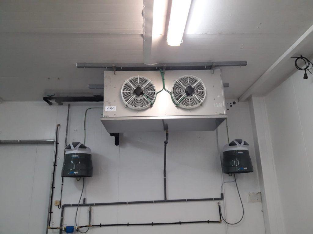 Nueva cámara de germinación en Semilleros Saliplant WhatsApp-Image-2019-03-18-at-18.11.45-1-1024x768